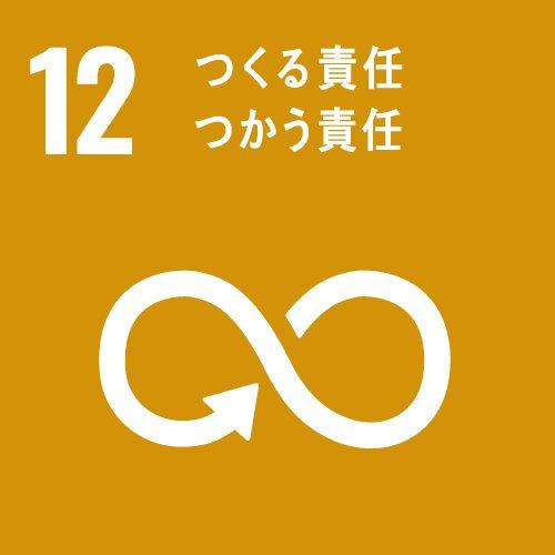 CHITABIJIN-sdg_12-icon